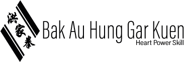 Swedish Hung Kuen Association